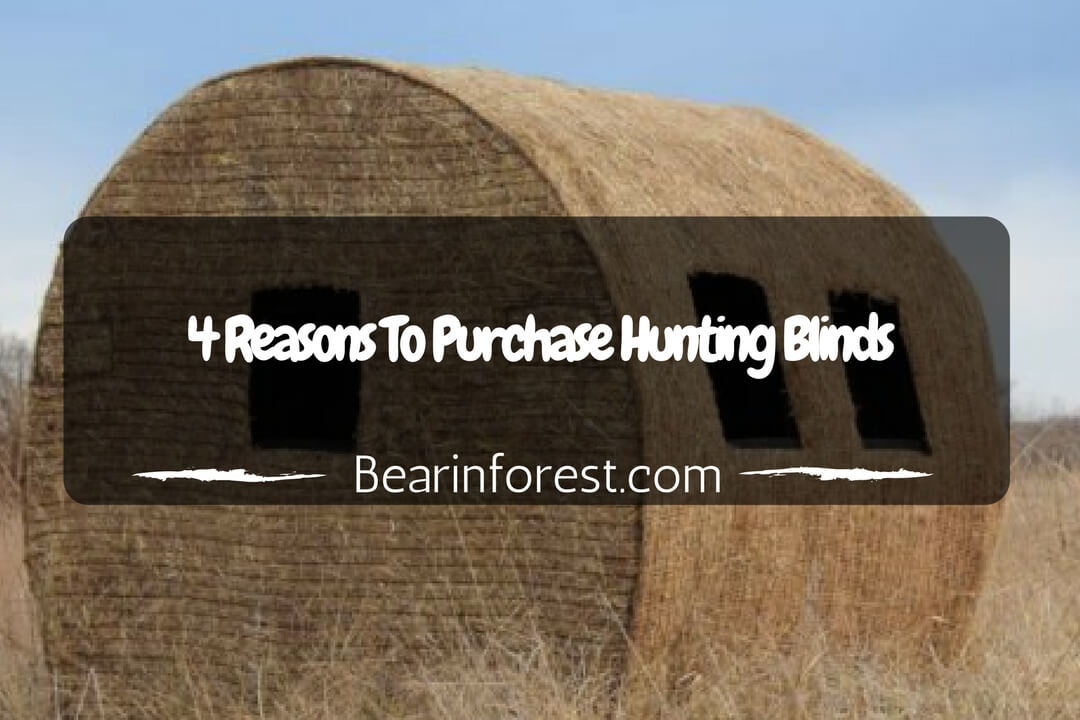 4 Reasons to Purchase Hunting Blinds
