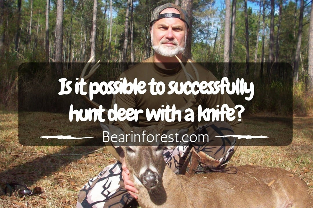 Is it possible to successfully hunt deer with a knife - feature