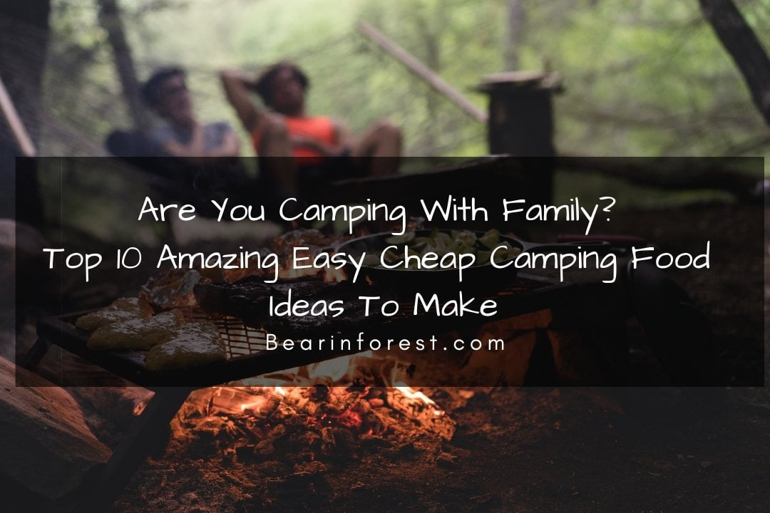 Top 10 Amazing Easy Cheap Camping Food Ideas To Make