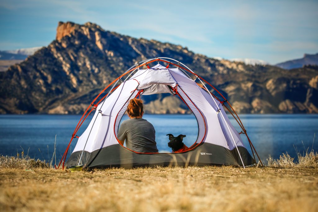 Learn How To Take Dog Camping That Will Make You A Pro 1