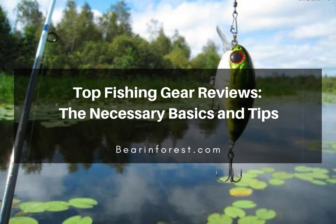Top Fishing Gear Reviews_ The Necessary Basics and Tips