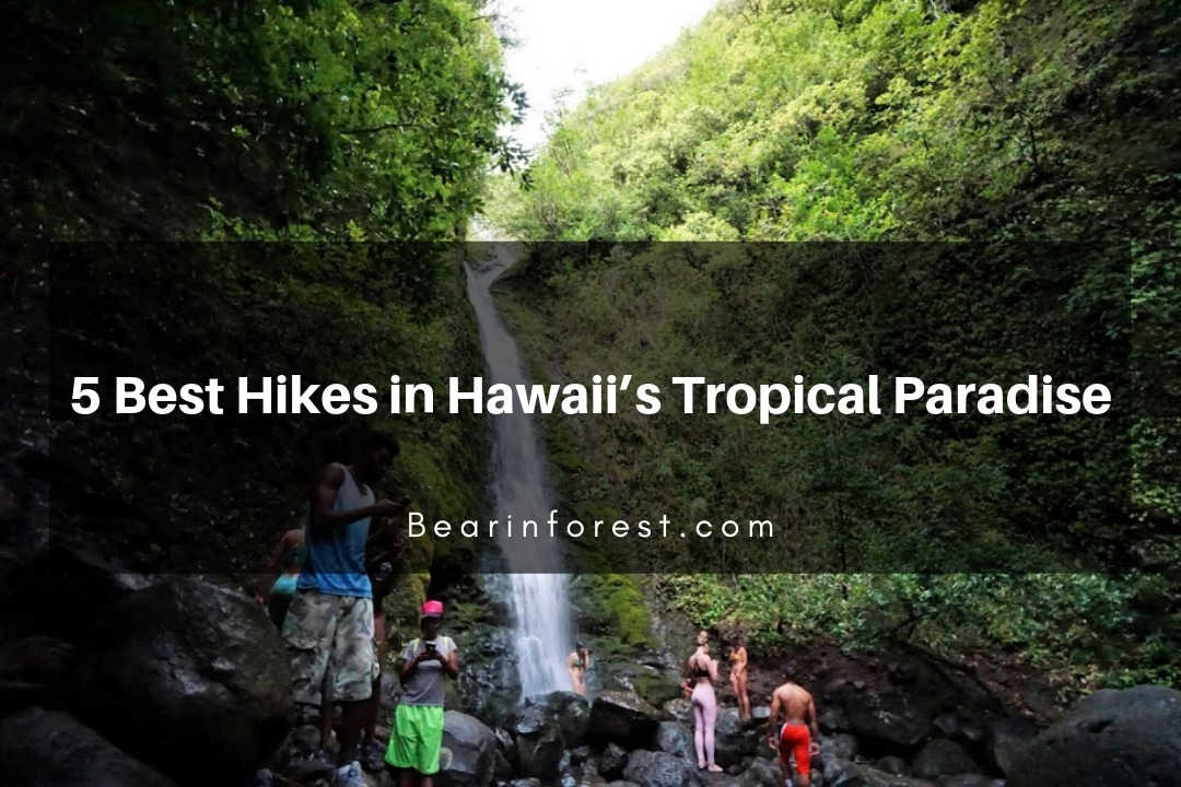 5 Best Hikes in Hawaii's Tropical Paradise
