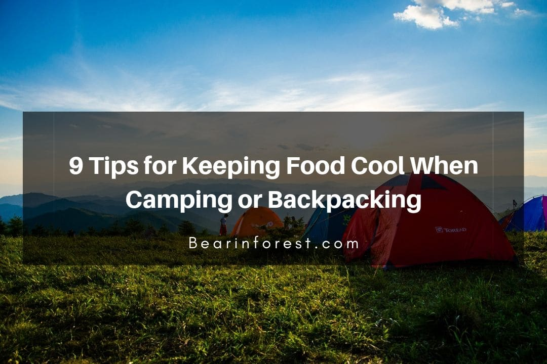 9 Tips for Keeping Food Cool When Camping or Backpacking