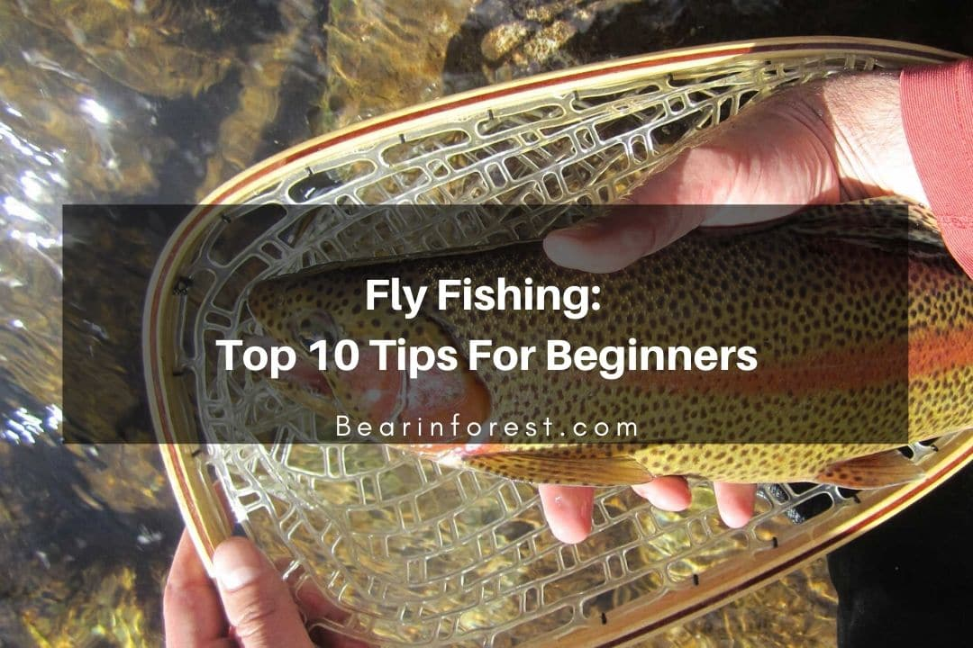 Fly Fishing_ Top 10 Tips for Beginners