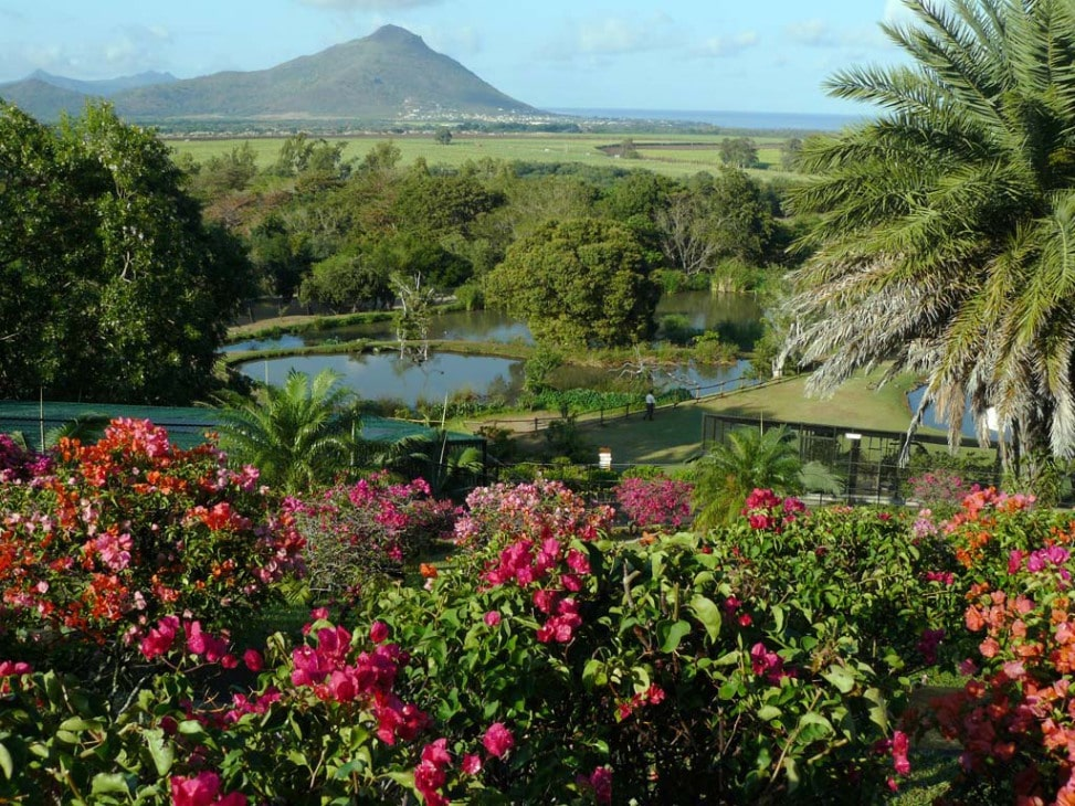 Several Things You Can Do While Visiting The Mauritius Attractions 3