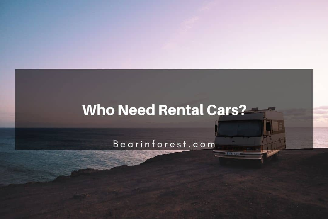 Who Need Rental Cars