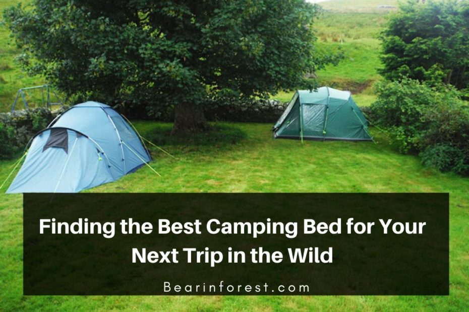 Finding the Best Camping Bed for Your Next Trip in the Wild