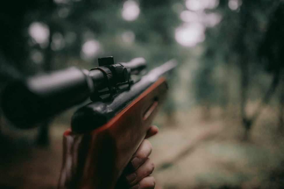 10 Tips to Make Sure You Don't Make a Mistake When Choosing a Scope for Hunting 1