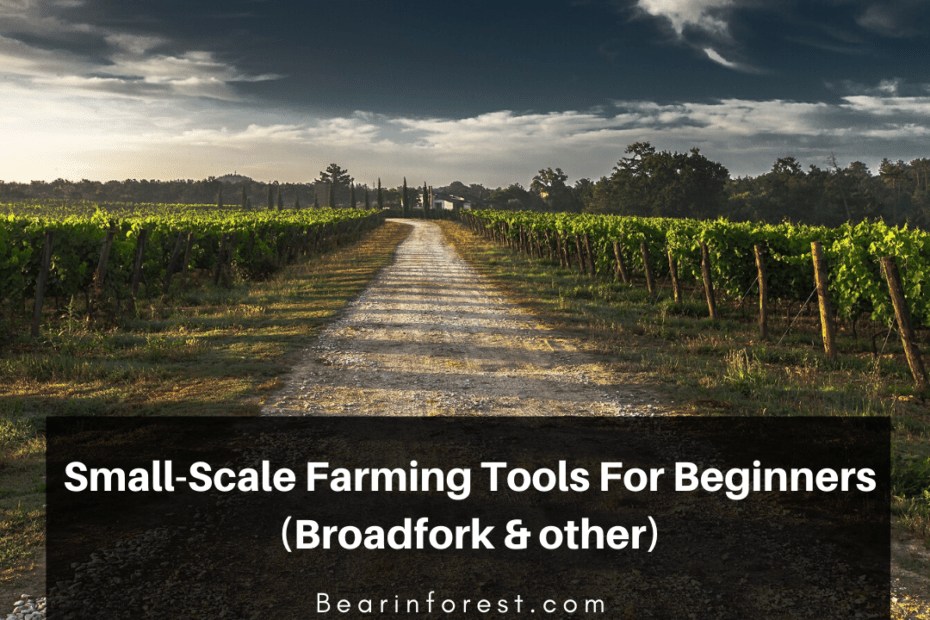 Small-Scale Farming Tools For Beginners (Broadfork & other)