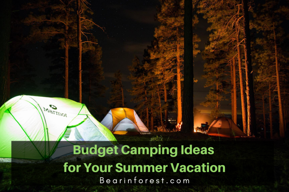 Budget Camping Ideas for Your Summer Vacation